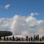 Old Faithful and more in Yellowstone National Park