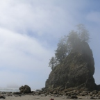 First, Second, and Third Beaches, La Push, WA