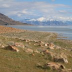 A Retreat Outside of Salt Lake City: Antelope Island State Park